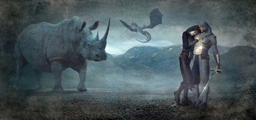 rinoce
